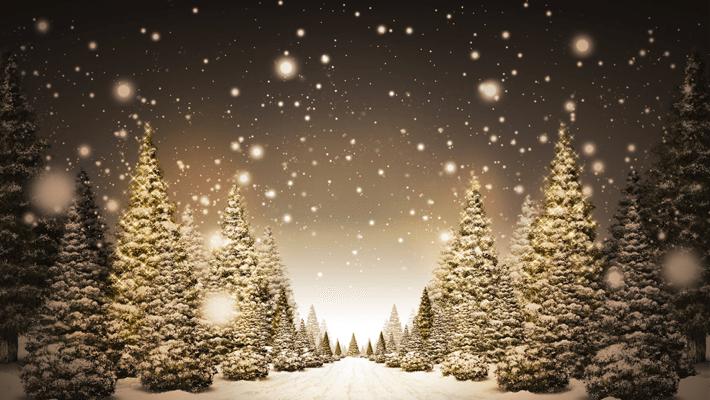クリスマスの準備OK?、片思いなら告白しよう、カップルならちょっと楽しく過ごそう