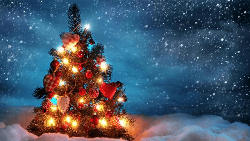 まぁ僕のクリスマスは1回も開催された事無いけどね。by Shinnoji
