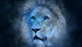 獅子座の恋愛傾向と相性の良い星座パートナー
