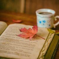 誰でもできるのに奥が深い!読書の秋に書物占い(ビブリオマンシー)はいかが?